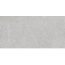 Stonehenge стена / пол светло-серый (ректификат) / 30х60 см