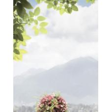 TROYANDA декор Sorrento / 25х33 см
