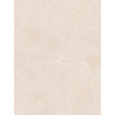 TROYANDA стена бежевая глянец / 25х33 см