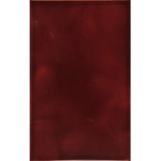 Плитка настенная LIANA PNT / 220x350