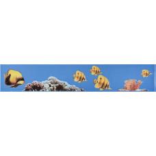 Фриз FISH / 400x70
