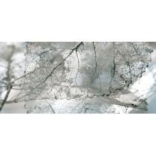 Magia декор серый №1 / 23x50 см